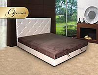 Кровать двуспальная  Офелия с подъемным механизмом № 2 Металлическая рамка + бельевой ящик