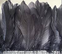Перьевая тесьма из гусиных перьев .Цвет черный.Цена за 0,5м