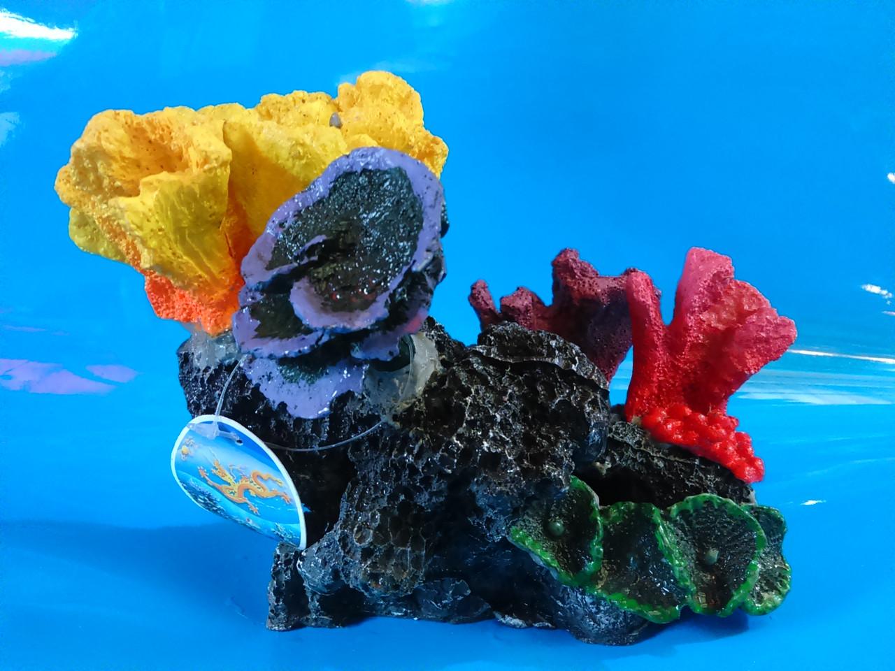 Скала с кораллами