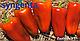Семена перца Любовь F1 \ Lubov F1 500 семян Syngenta , фото 2