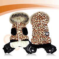 """Комбинезон, костюм """"Леопард"""" для собаки. Одежда для собак"""