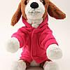 """Куртка, толстовка """"Reg & Blue"""" для собаки, кошки. Одежда для собак, кошек, фото 6"""