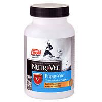 Комплекс витаминов и минералов для щенков до 9 месяцев, НУТРИ-ВЕТ ПАППИ-ВИТ Nutri-Vet  60табл.