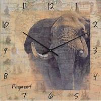 Часы настенные из стекла - Слон(немецкий механизм)