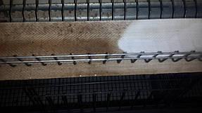 Вымытая начисто лента подачи яйца