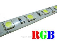 Светодиодная лента SMD 5050 60 светодиодов/метр RGB (герметичная)