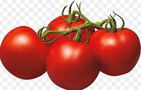 """Семена томатов """"Южный Пальмира"""" 100 грамм купить оптом от производителя в Украине"""
