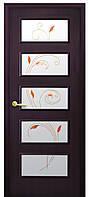 Дверь КВАДРА ЕВА экошпон  венге 3D, дуб жемчужный, кедр, сандал, ясень патна (стекло рис. Р2) тип1