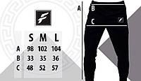 Спортивные штаны FDR, фото 1
