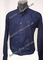 Стильная мужская рубашка с длинным рукавом 1241