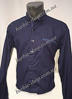 Красивая мужская рубашка в расцветках 1244
