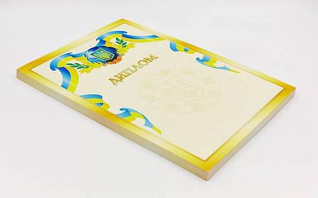 Диплом спортивный чистый С-1802-5 (бумага, формат A4, р-р 21см х 29,5см, в уп.50шт,), фото 2