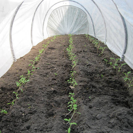 Агроволокно Premium-agro 30г/м2 - 4,2х100м, фото 2