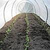Агроволокно Premium-agro 30г/м2 - 6,35х100м