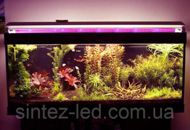 Подсветка аквариумов