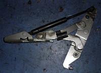 Петля крышки багажника правая седанNissanPrimera P122002-200884400AV630