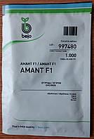 Семена раннего огурца Амант F1. Упаковка 1 000 семян. Производитель Bejo.
