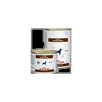 Royal Canin Gastro Intestinal/Роял Канин влажный корм для собак с расстройством пищеварения