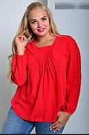 Блузки жіночі сорочки