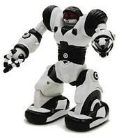 Мини-робот Робосапиен (Уценка)