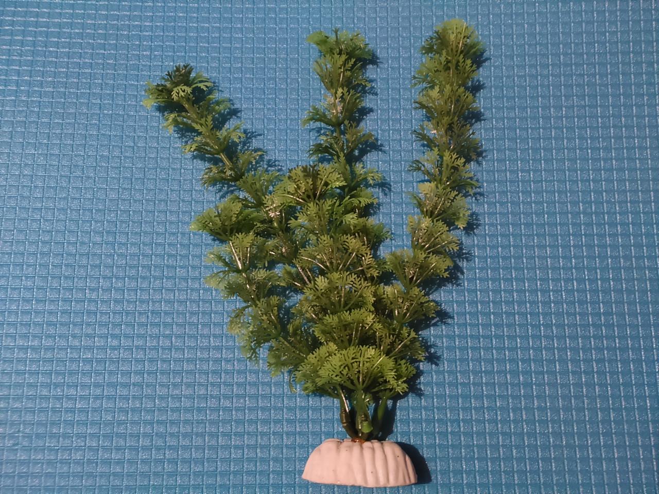 """Растение серии """"Sunny"""" AP- 036C,  20см"""