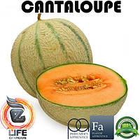 Ароматизатор TPA Cantaloupe Flavor (Мускусная дыня)
