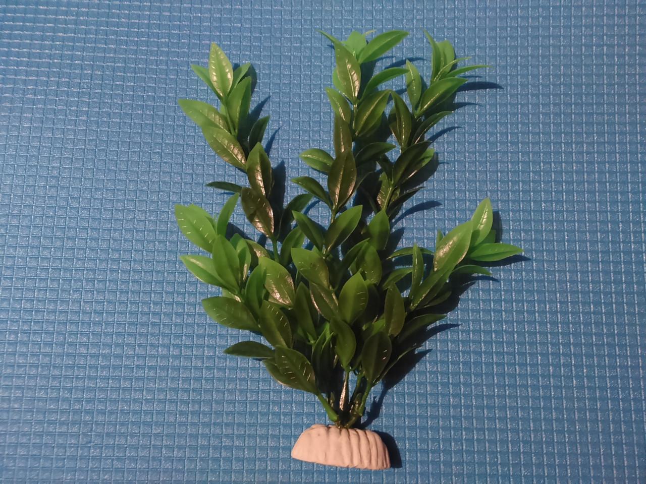 """Растение серии """"Sunny"""" AP- 039C,  20см"""