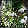 Поздравляем всех девочек, девушек и женщин с прекрасным праздником весны!
