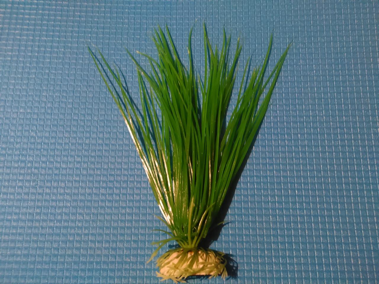 """Растение серии """"Sunny"""" AP -016C,  20см"""