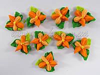 Фиалка с листочками, сахарные (разные цвета)
