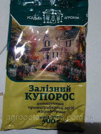 ЖЕЛЕЗНЫЙ КУПОРОС 500гр, фото 2