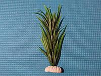 """Растение серии """"Sunny"""" AP-100C, 20см"""