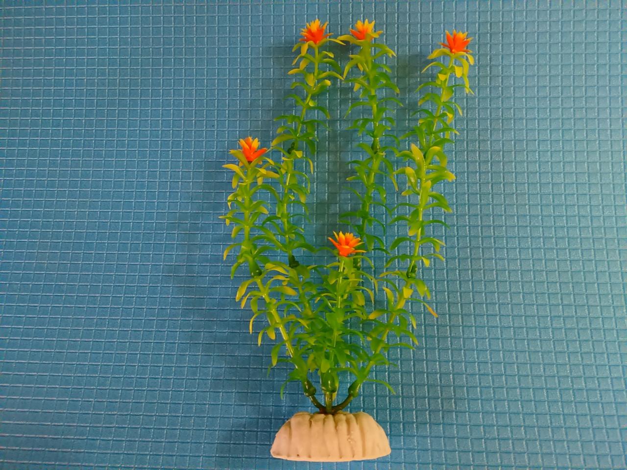 """Растение серии """"Sunny"""" AP-029Е, 20см"""