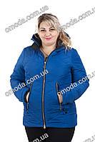 Модная демисезонная куртка большой размер синяя Берта