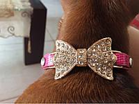 """Ошейник с украшением """" Бантик Сваровски"""" для собак, кошек. Ошейник для животных"""
