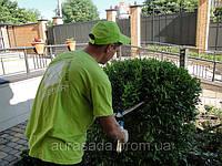 Услуги садовника - комплексное обслуживание