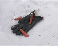 Отрубленные пальцы (5 шт.)