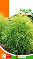 Семена Кохии 0,5 г