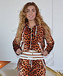 """Женский велюровый турецкий костюм  """"Roberto Cavalli"""" со стразами ; разм 42,44,46,48,50, фото 3"""