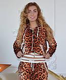 """Жіночий велюровий турецький костюм """"Roberto Cavalli"""" зі стразами ; розм 42,44,46,48,50, фото 3"""