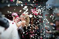 Лепестки роз на свадьбу фиолетовые 150 шт., фото 4