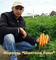 """Морковь """" Шантоне роял"""""""