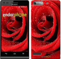 """Чехол на Huawei Ascend G6 Красная роза """"529u-367"""""""