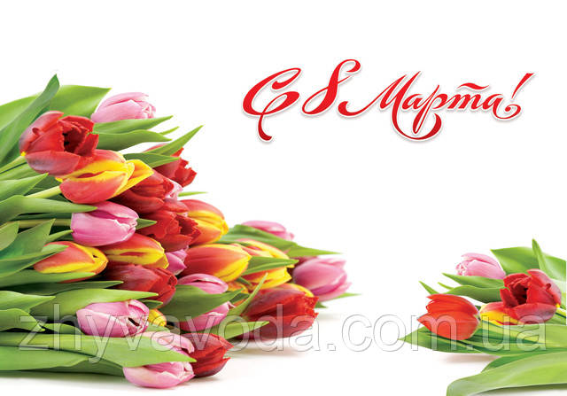 поздравляем всех представительниц прекрасного пола с весной и праздником