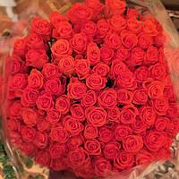 Букет 101 красная роза 60 см