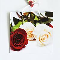 Подарочный пакет ЧАШКА 16х16х7,5 Розы