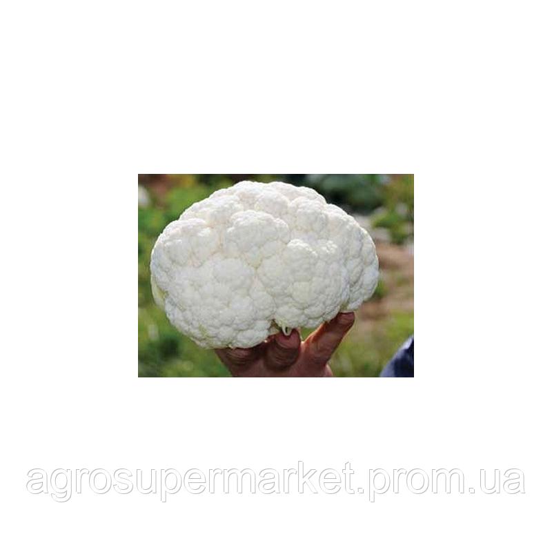 Сеул F1 семена капусты цветной средней (Hazera) 1000шт