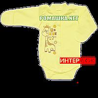 Детский боди с длинным рукавом р. 62 демисезонный ткань ИНТЕРЛОК 100% хлопок ТМ Алекс 3149 Желтый