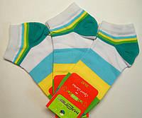 Спортивные женские низкие носки в цветную полоску