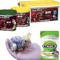 Универсальная смесь для ручного кормления попугаев